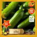 عروض أسواق القرية قطر 2021