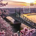 Enjoy your Honeymoon in Budapest