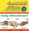 dana Qatar Offers - Daily Deal