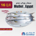Mullet , Egypt