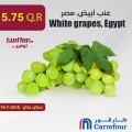 عنب أبيض، مصر