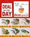 Souq Al Baladi QATAR offers 2021