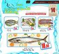 Offers Tuesday for fishing -  masskar hyper market Qatar