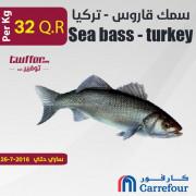سمك قاروس - تركيا