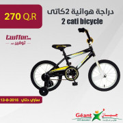 2 cati bicycle