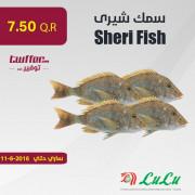 Sheri Fish 1KG