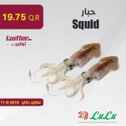 Squid 1KG